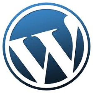 selecting the perfect wordpress theme for your blog