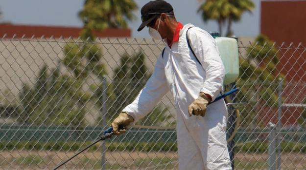 Pest Control Problem