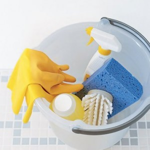 Start a Restroom Cleaning Business