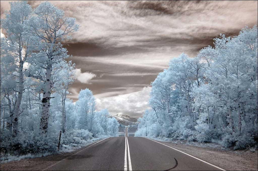 Roadway Infrared Photo