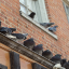 How to Keep Birds off Window Sills and Rooflines