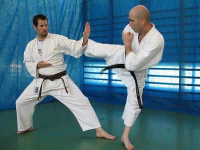 Tips about Difference Between Karate and Judo