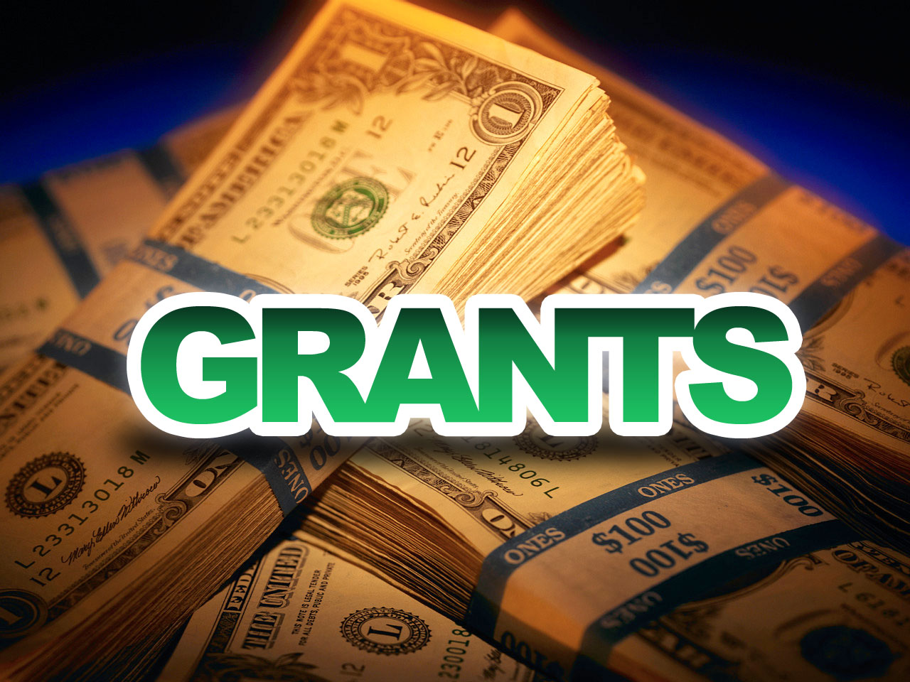 Grants for an Educational Faculty