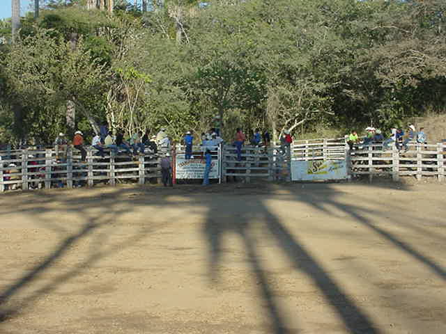 A rodeo arena