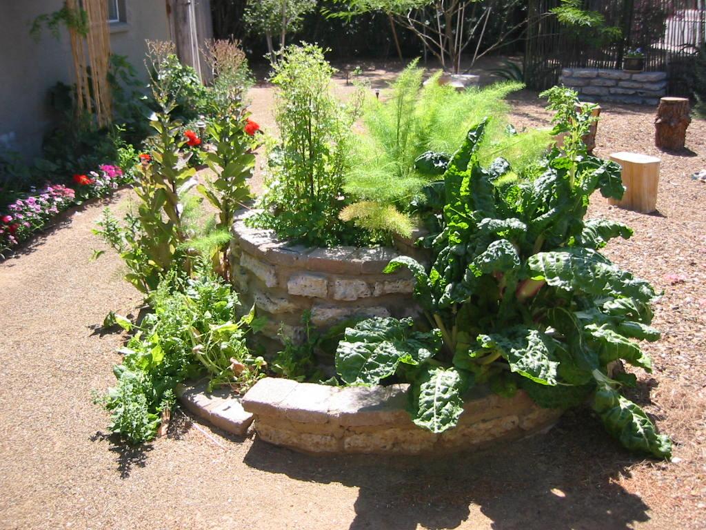 Nice-looking spiral herb