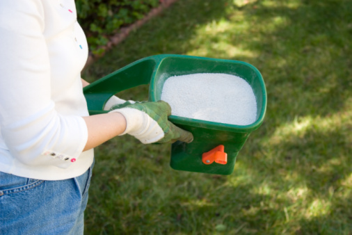 Tips about How to Choose Fertilizer for the Yard