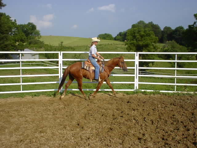 Construct a Round Pen for a Horse