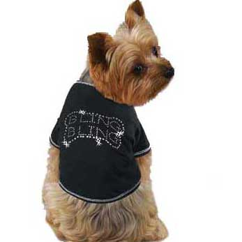 Creating Custom T-Shirts for Dogs