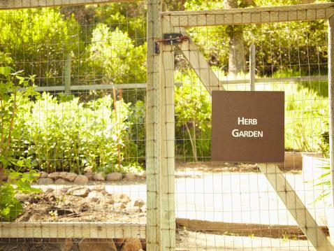 Design an Herb Garden