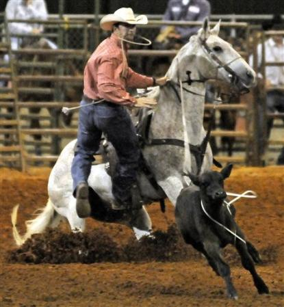 Calf roping event in a rodeo