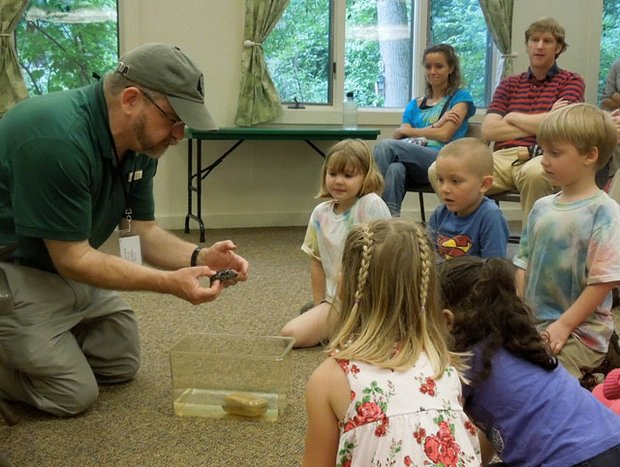 Tips to Find a Summer Job as a Naturalist