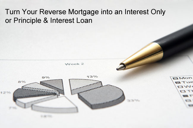 How to Get a Negatively Amortizing Mortgage