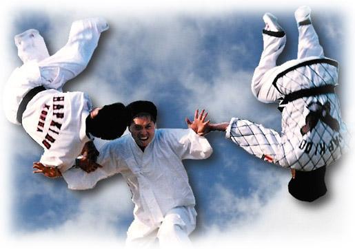 Hapkido Club