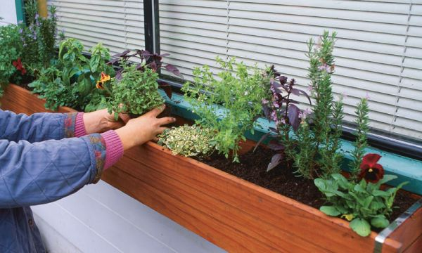 How to Make an Herb Window Box