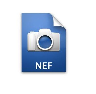 Open NEF Files In Photoshop