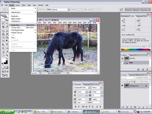Resize an Image in Adobe Photoshop