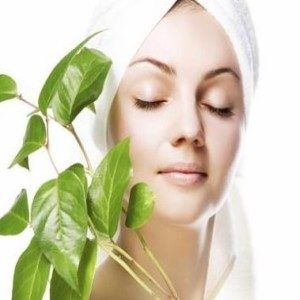 Use Mint Juice to Treat Blackheads