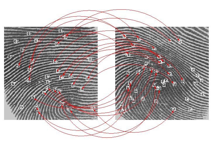 Biometric Fingerprint Systems