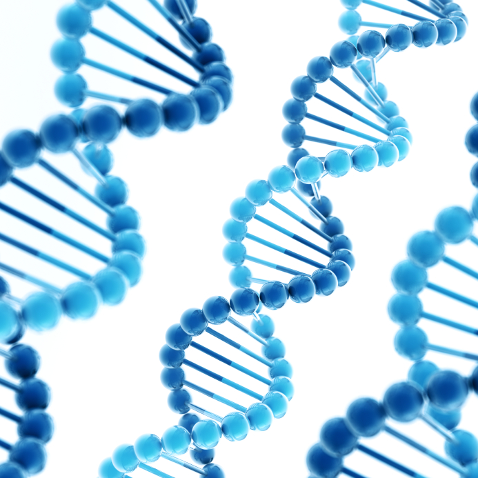Difference Between DNA and RNA Virus Replication