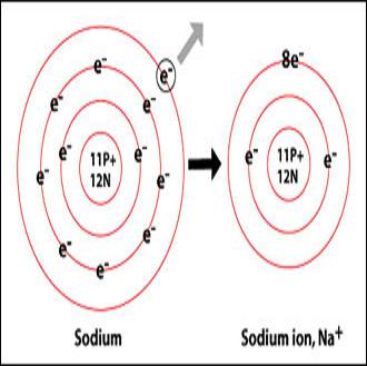 atom and potential difference Phys12 electric potential : quiz - 20 1) two charges are separated by a distance of 075 m a deuterium atom (hydrogen with a neutron in the nucleus) has an.