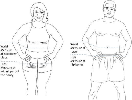 Difference between Hip and Waist