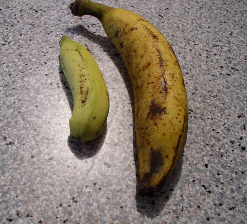 Plantain and Banana