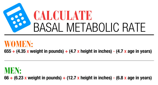 How to Calculate your Basal Metabolic Rate