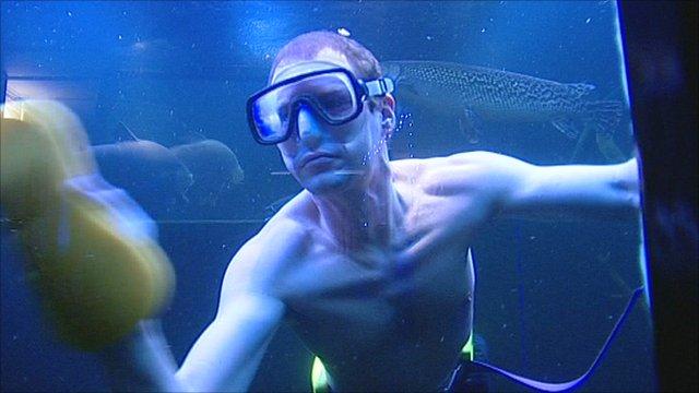 How to Clean Aquarium Reef