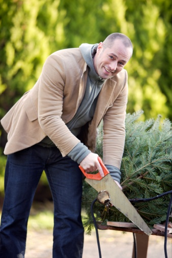 Tips about How to Cut the Bottom of a Christmas Tree