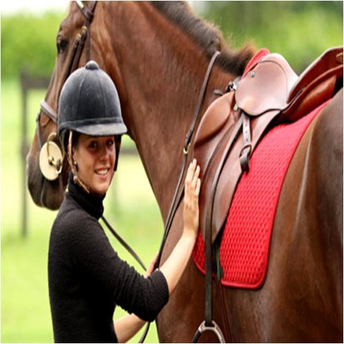 Renvers on Horseback