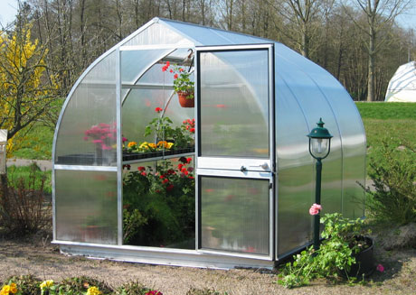 Tips to Overwinter Plants in a Greenhouse