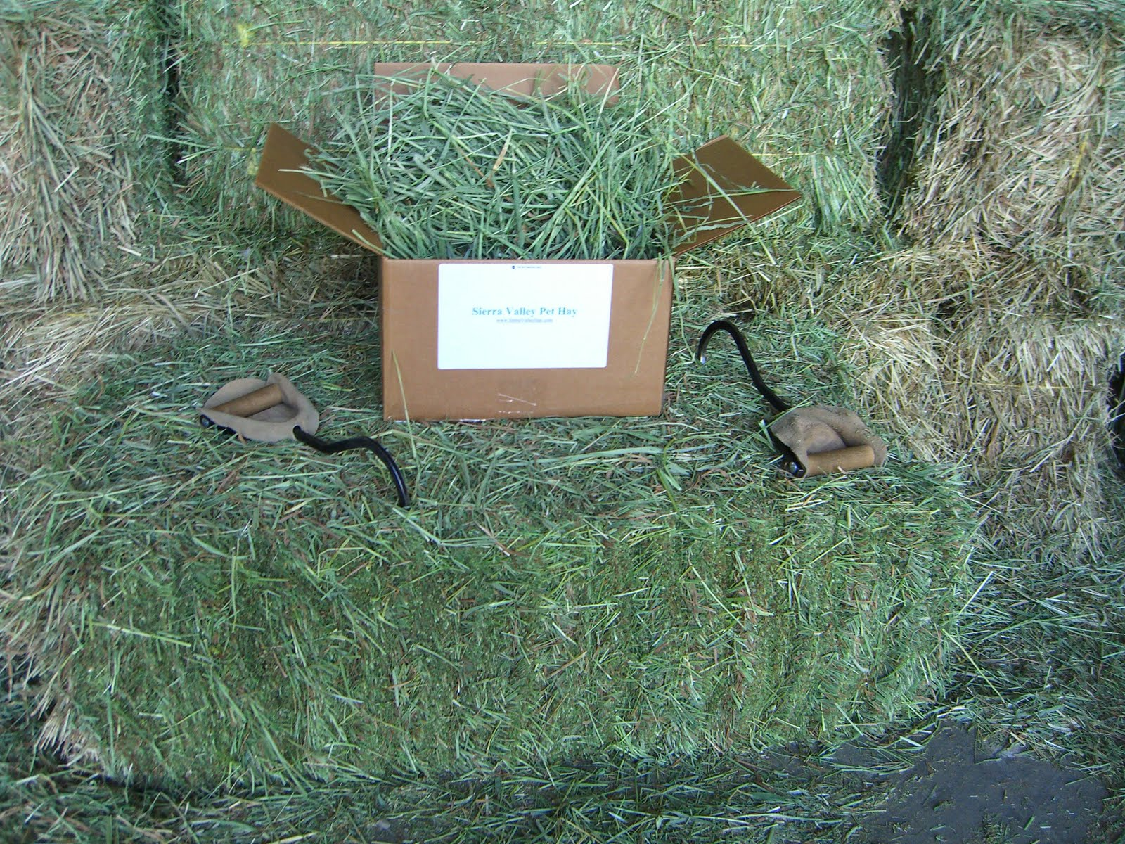 Sell Hay