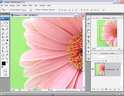 Show or Hide Palettes in Adobe Photoshop