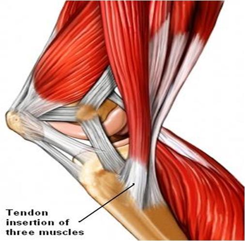 knee problem singapore sports and orthopaedics clinic