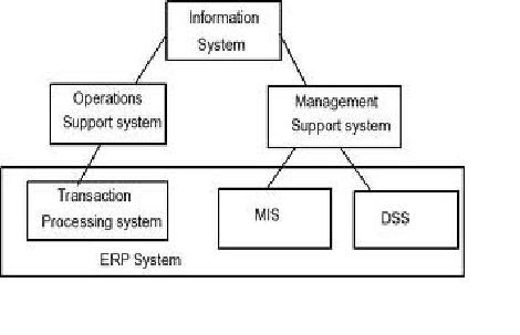 MIS system