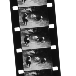 How to Edit 16mm Film