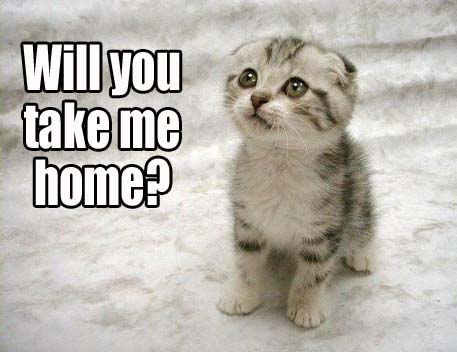 will you take me home?