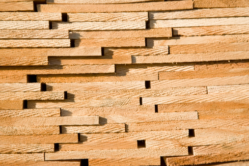 Cedar Shingles on Roof