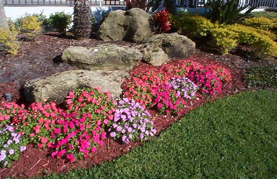 How To Landscape With Coquina Rock