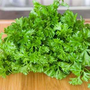 Herbs parsley