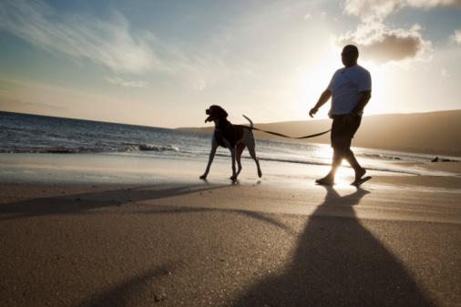 Man walking his dog along beach