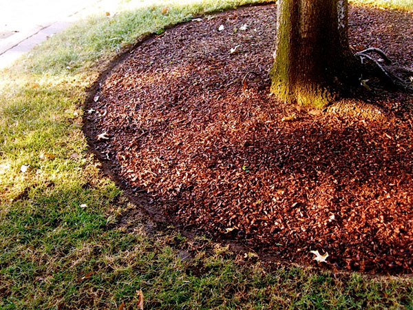 Keep Mulch in Place