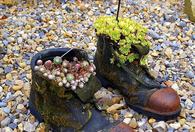 Recycle Old Boots