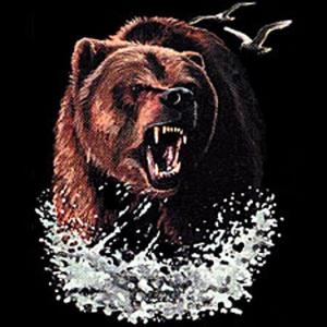 Survive a Bear Attack
