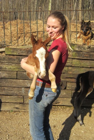 Take Care of a Foal