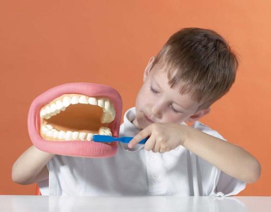 Boy Taking Care of Teeth