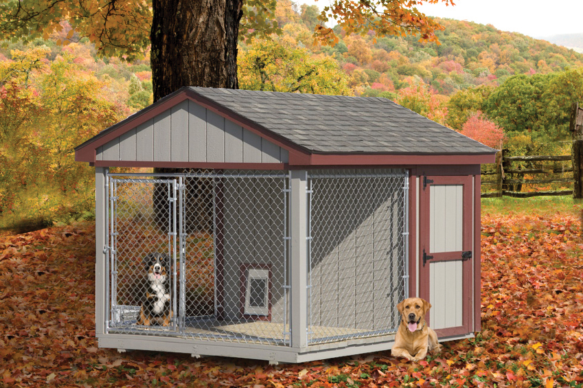 Dog Kennel out of Wood