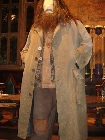 Hagrid Costume
