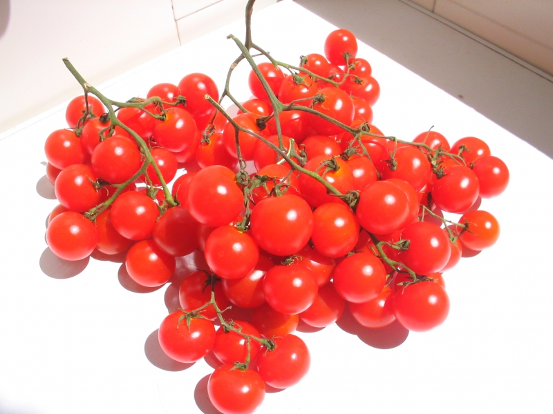 How To Plant Grape Tomatoes From Seed