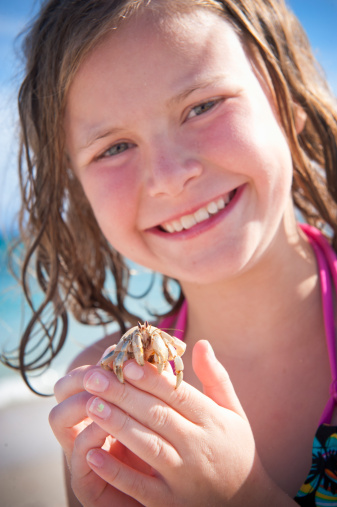 How to Care for a Hermit Crab